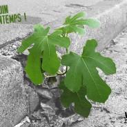 Motion – L'agriculture urbaine pour renouer avec la nature