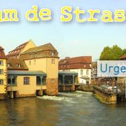 A Strasbourg, les Jeunes Écologistes veulent répondre à l'urgence démocratique